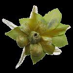 Broche bladgroen transp 150x150